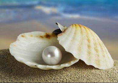 perlas de sabiduraía